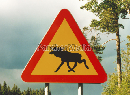 achtung alces 2